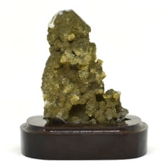 Madeira Petrificada na Base 358 g