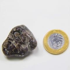 Pedra Jaspe Orbicular Rolado 2x5cm
